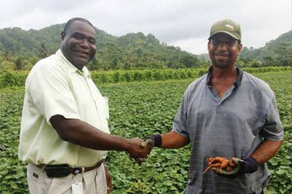 Image: CFL's Dunstan Denville (left)... his direct farm intervention producing results.