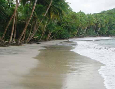 Image of Batibou beach