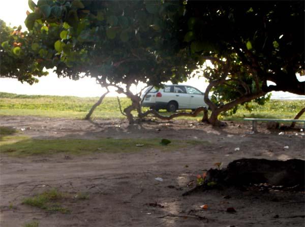 A section of Sandy Beach.