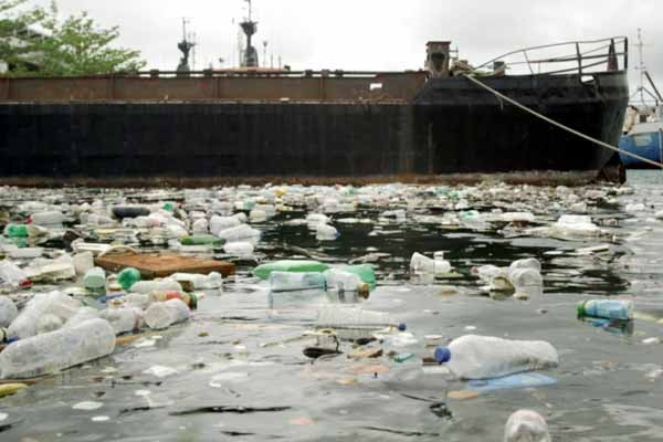 Image: Plastic bottles in the Castries harbour.