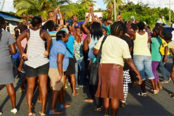 Image: Sammy and Charles are mobbed in the Mabouya Valley in Dennery.