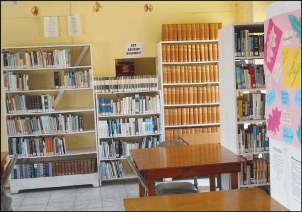 library-shelves
