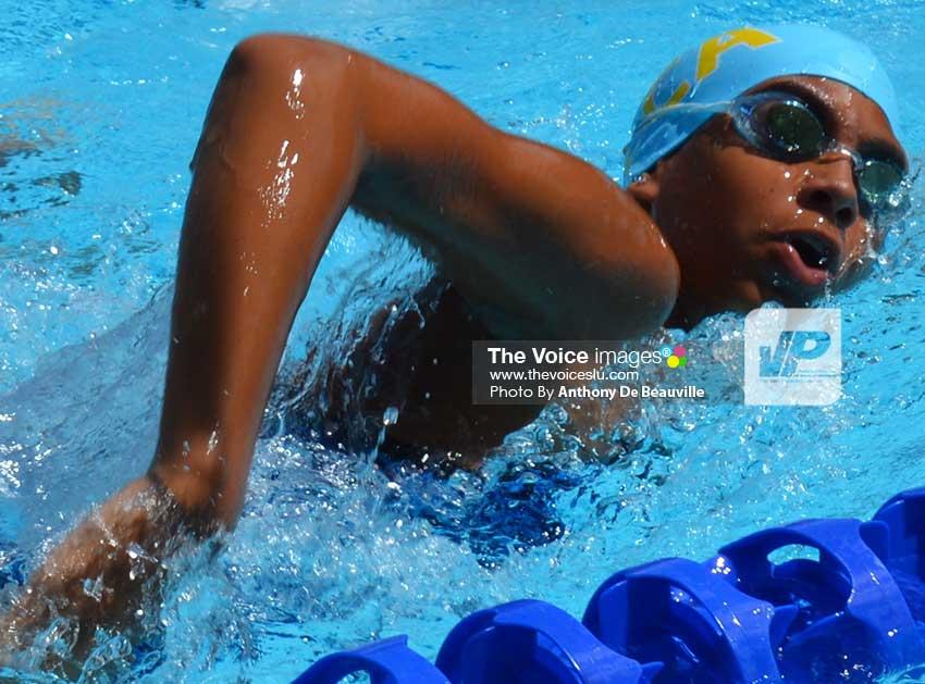 hill topper invitational swim meet definition