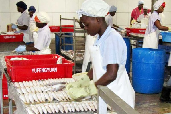 Image: Guyana and other CARICOM countries maintain a vibrant fisheries sector.