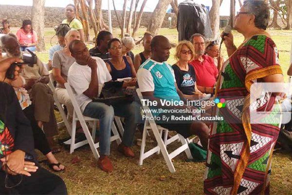 Image: SLNT Meeting In Progress. PHOTO: Rochelle Gonzales