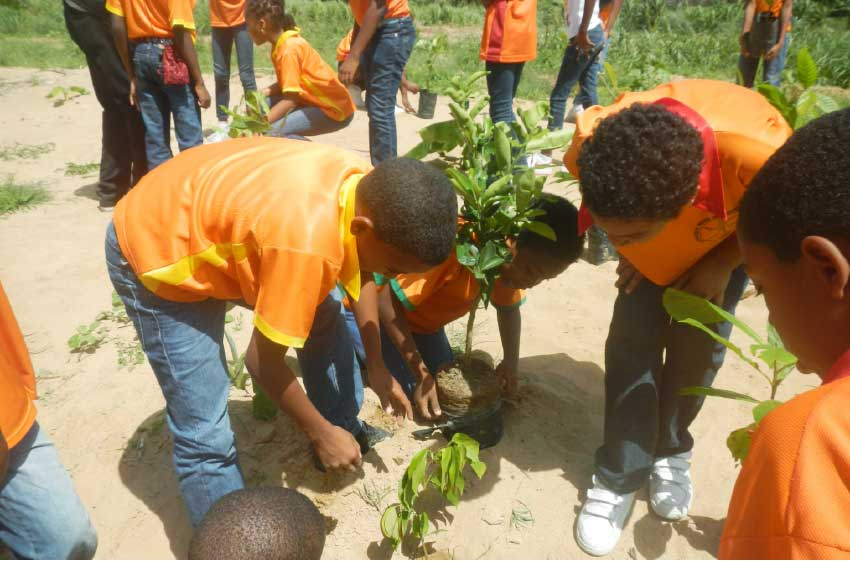 Image of Children planting trees.