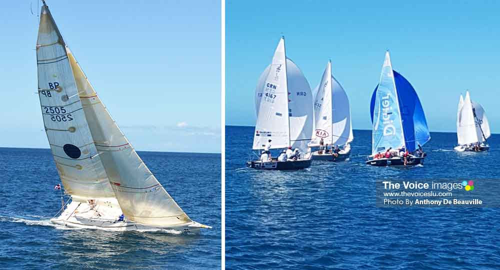 Image: Some of the participants at the 6th Mango Bowl Regatta (Photo: Anthony De Beauville)