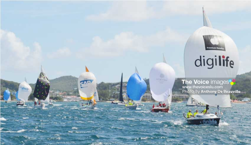 Image: Some of the participants in last year's Regatta.(PHOTO: Anthony De Beauville)