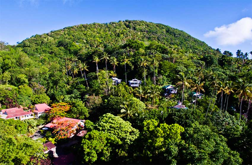 Image: Aerial Plantation House View