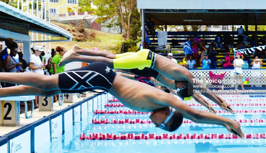 Image: Start of the boys' 100 metres freestyle event. (Photo: Anthony De Beauville)