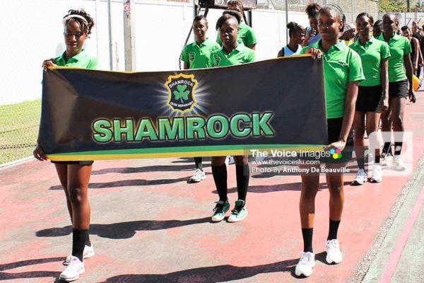 Image of Shamrock (Photo: Anthony De Beauville)