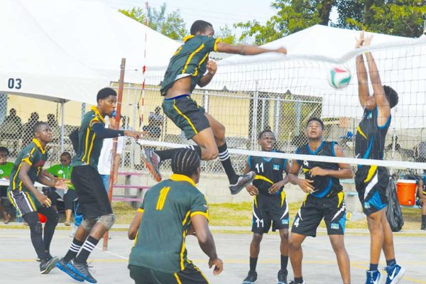 Image of some of the volleyball action between saint Lucia and Dominica