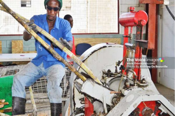 Image: NWU members having a first hand look as to how sugar can juice is made. (PHOTO: Anthony De Beauville)