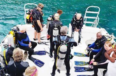 Image of North American Divers loved what they saw in underwater Saint Lucia – and promised to spread the word.
