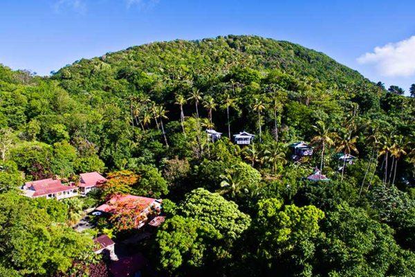 Image of Fond Doux Plantation