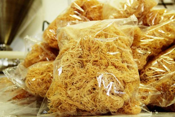 Image of First Shipment of Sea Moss