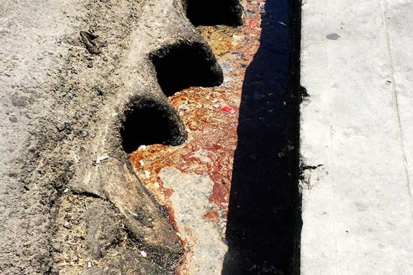 Image fat, oil, and grease in a drain.
