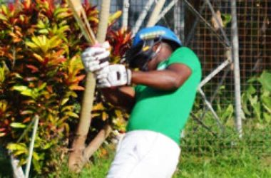 Image: A South Castries U19 lower order batsman hits out in the final over