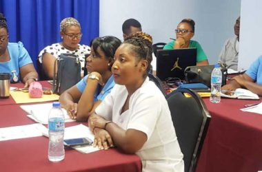 Image of Participants at the workshop on the soon to be implemented Perinatal Information System.