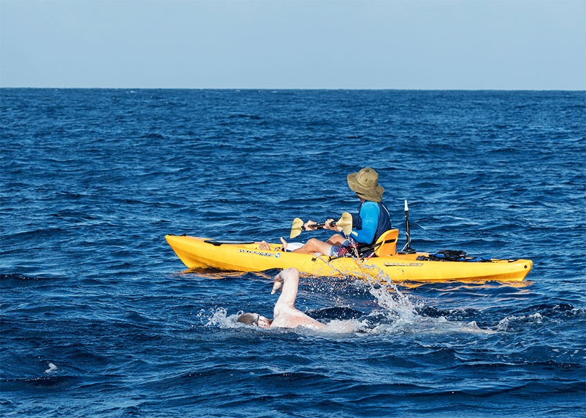 Image: Bellamy swims in open water on route to Saint Lucia