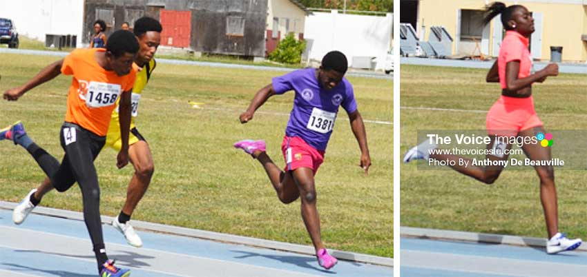 Image: (L-R) No. 1458 Sirgio Mc Kenzie 1st across the finish line in the boys 100 meters final; No. 1504 Annela Phillip made light work of the field to win the Women 800 meters final. (PHOTO: Anthony De Beauville)