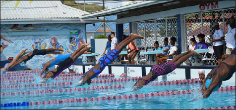 Image: A few of Saint Lucia's top female swimmers dive right in. (PHOTO: Anthony De Beauville)
