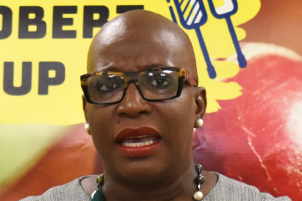 Image of Minister for Education, Innovation, Gender Relation and Sustainable Development, Dr. Gale Rigobert addressing the media on Wednesday. (PHOTO: Anthony De Beauville)