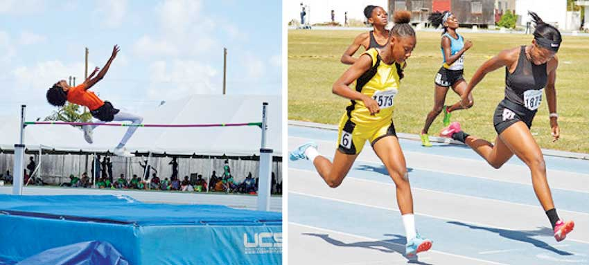 Image: Local Athletes To Compete After 14 Months In Limbo