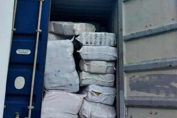 Image of Container seized with 2 Tonnes of marijuana.