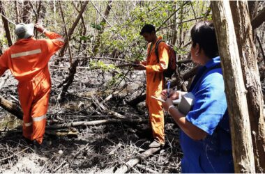 Ma Kote mangrove assessment with Institute of Marine Affairs team.